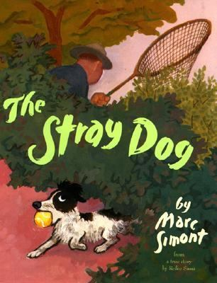Stray dog image cover