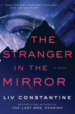 The Stranger in the Mirror image cover