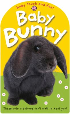 Baby Bunny image cover