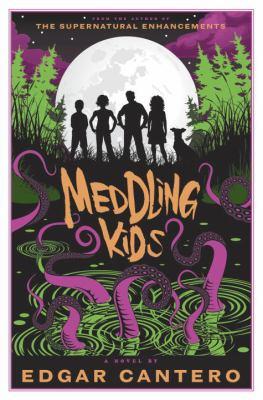 Meddling Kids  image cover