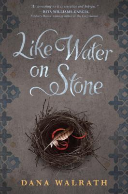 Like Water on Stone image cover