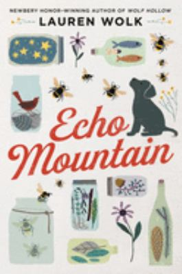 Echo Mountain image cover