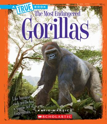 Gorillas image cover