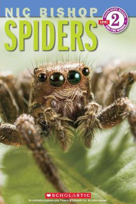 Spiders image cover