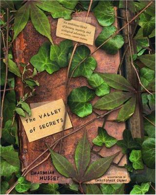 The Valley of Secrets  image cover