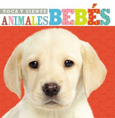 Toca y siente animales bebés image cover
