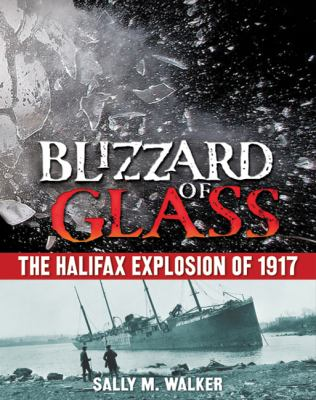 Blizzard of glass : the Halifax explosion of 1917 image cover