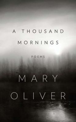 A Thousand Mornings image cover