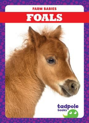 Foals image cover