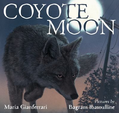 Coyote Moon cover