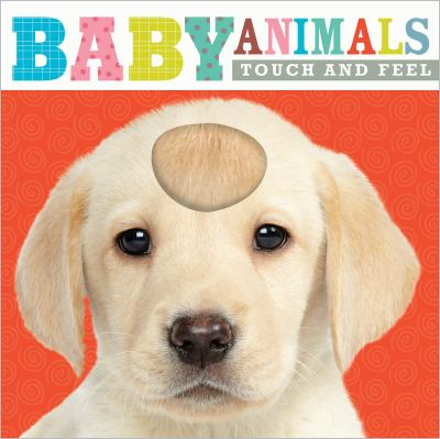 Baby Animals Touch and Feel image cover