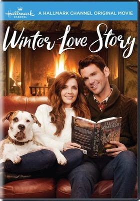 Winter Love Story image cover