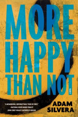 More happy than not : a novel by  Silvera, Adam