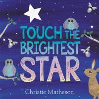 Cover image for Touch the brightest star