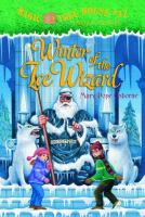 Cover image for Winter of the ice wizard