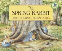Cover image for The spring rabbit