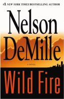 Cover image for Wild fire : a novel