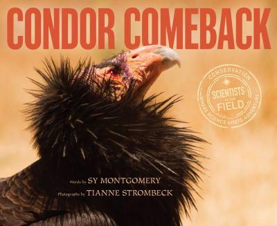 Cover image for Condor comeback