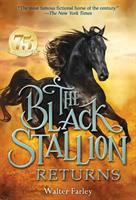 Cover image for The black stallion returns