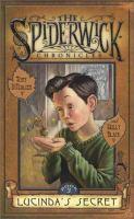 Cover image for Lucinda's secret : Book #3