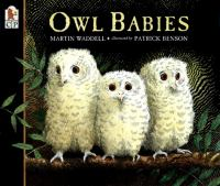 Cover image for Owl babies