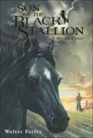 Cover image for Son of the black stallion