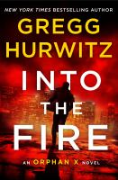 Cover image for Into the fire