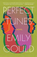 Cover image for Perfect tunes : a novel