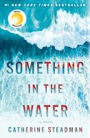 Cover image for Something in the water : a novel