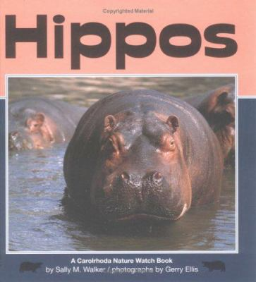 Cover image for Hippos