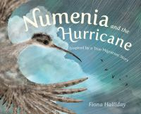 Cover image for Numenia and the hurricane : inspired by a true migration story
