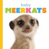 Cover image for Baby meerkats