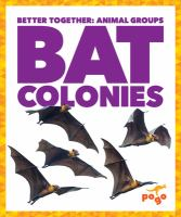 Cover image for Bat colonies