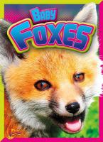 Cover image for Baby foxes
