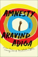 Cover image for Amnesty : a novel
