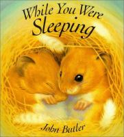 Cover image for While you were sleeping