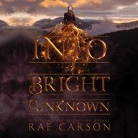 Cover image for Into the bright unknown