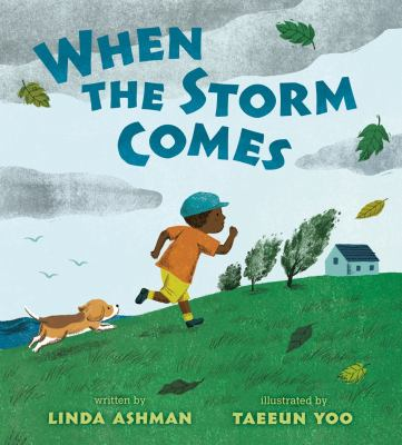 Cover image for When the storm comes