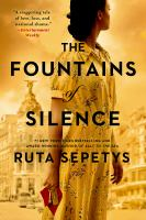 Cover image for The fountains of silence : a novel