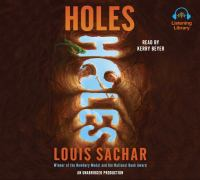 Cover image for Holes