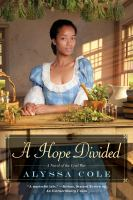 Cover image for A hope divided : a novel of the Civil War