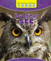 Cover image for How animals see