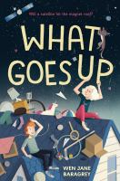 Cover image for What goes up