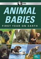 Cover image for Animal babies. First year on Earth