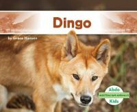 Cover image for Dingo