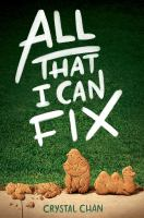 Cover image for All that I can fix