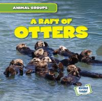 Cover image for A raft of otters
