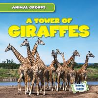 Cover image for A tower of giraffes