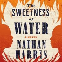 Cover image for The sweetness of water