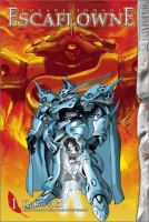 Cover image for The vision of Escaflowne